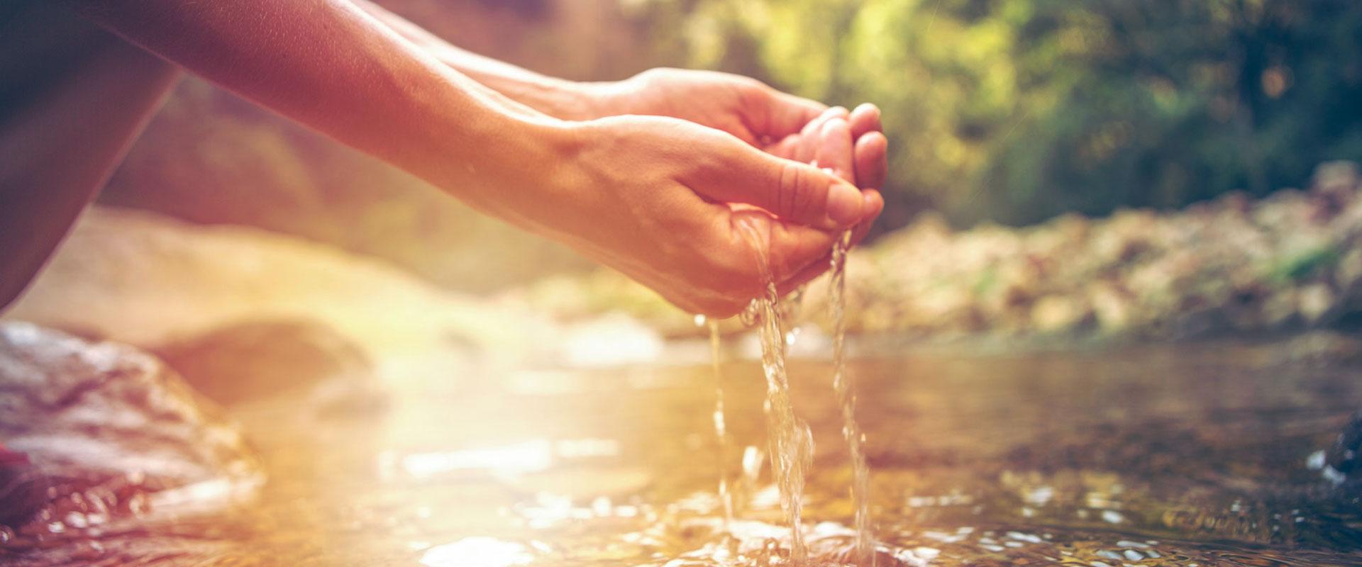 Santé = Hygiène Écologique.