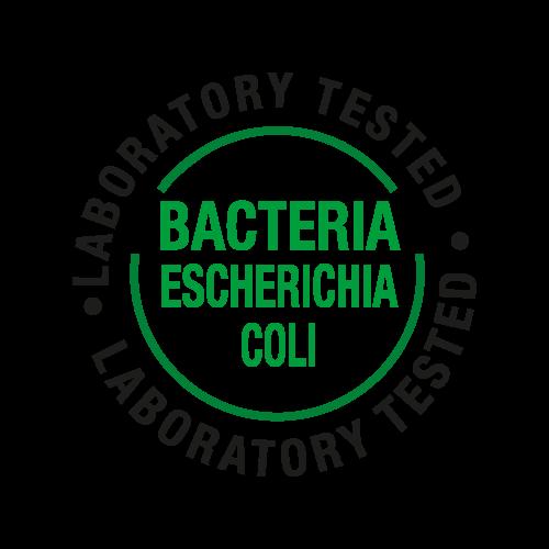 Batterio(Escherichia Coli)